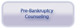 Pre-Bankruptcy Counseling